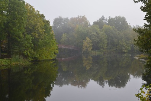 bridge ontario fog reflections nikon day foggy perth d610 24120 tayriver pwfall