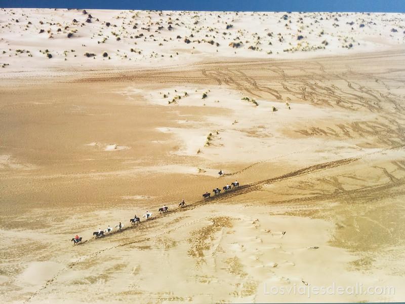 fotografía de Frederick Larrey en argeles sur mer y Paulilles