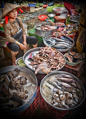 Stern looking Fish Seller in Hoi An Market