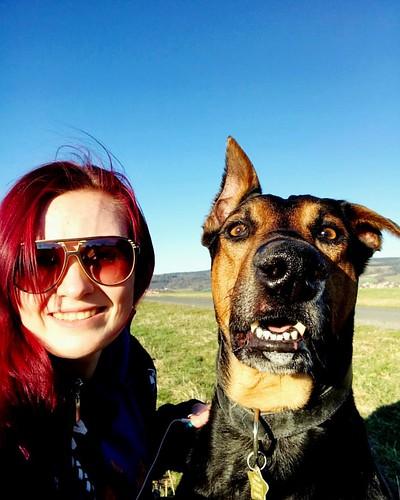 Small walk with my best friend 🐶💁#goodday #goodweather #sunny #sunnyday #walk #dog #gassi #happy #goodlife #goodtime #amazing #life#love #fun #bestfriends #humansbestfriend #dobermann #doberman #dobermanoftheday #dobbie