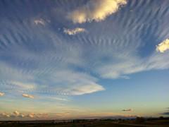 Cool Cirrus Clouds #COWX