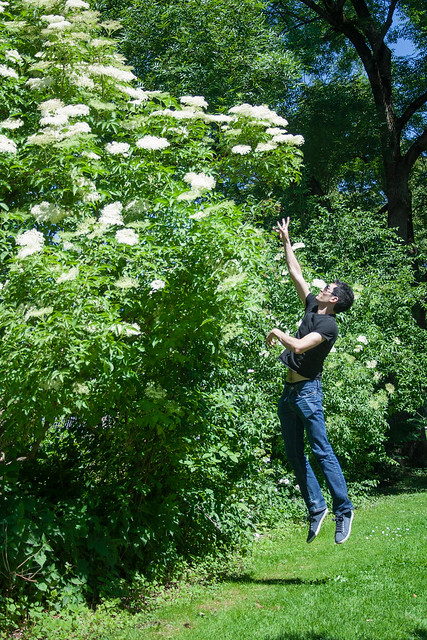 Picking elderflowers - jump shot