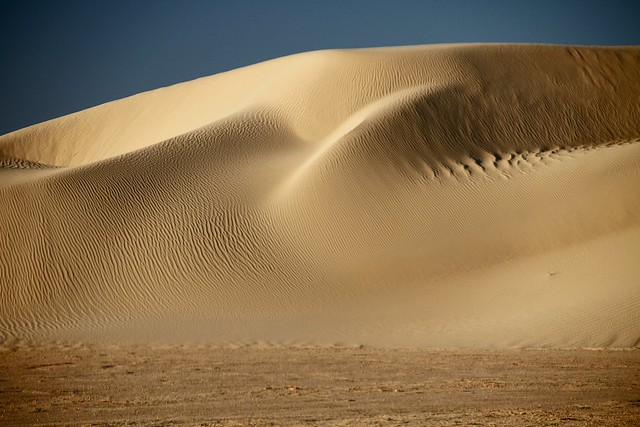 Tunisia, dune presso Nefta