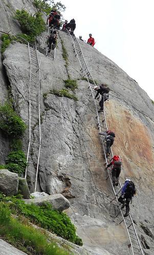 More Mer de Glace Ladders