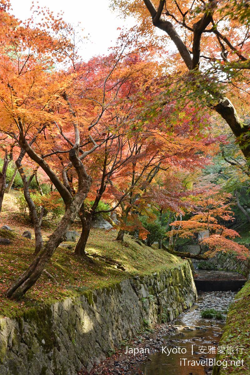 京都 东福寺39