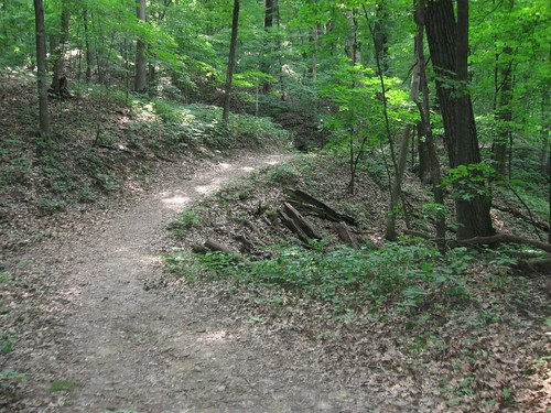 Sugar Maple Trail, Wyalusing State Park