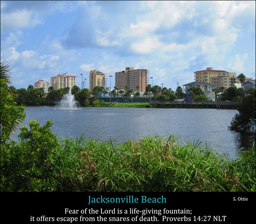 city blue sky urban plants usa lake green beach water fountain skyline clouds america us skyscrapers florida united foliage jacksonville fl states condos condominiums
