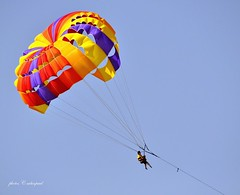 parachute, sports, parasailing, windsports, extreme sport,