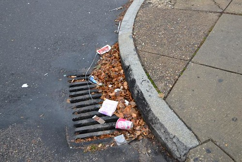 litter-covers-a-drain