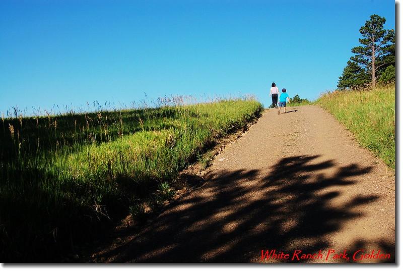 草原、步道 1