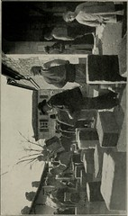 """Image from page 206 of """"A trip to the Orient; the story of a Mediterranean cruise"""" (1907)"""