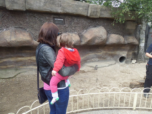 Sian and Jasmine with the Meerkats