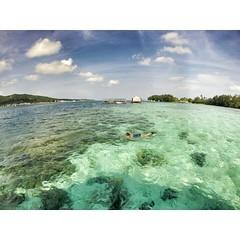 Snorkeling on #karimunjawa. #gopro #wismaapung #triptothemoon #travel #beach #goprohd
