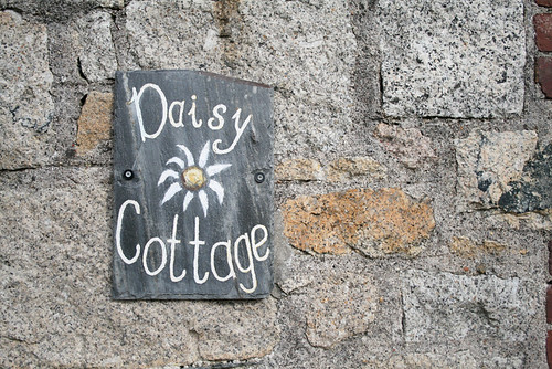 daisy cottage