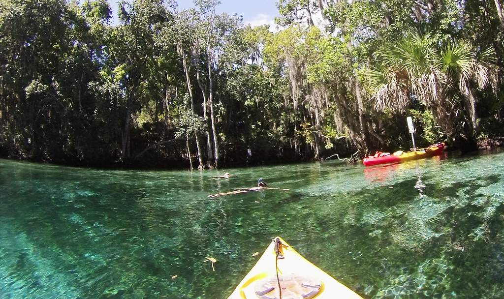 A Snorkeler at Three Sisters Springs, Crystal River National Wildlife Refuge, Fla.