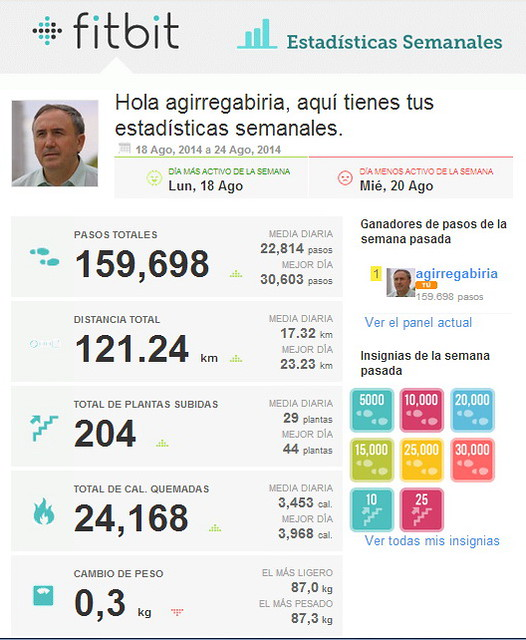 FitBit20140818