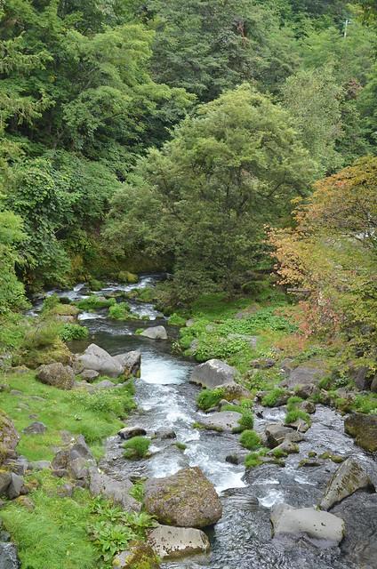 長野県蓼科散策 2014年9月15日