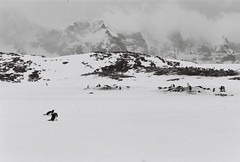Antarctica Lost Film (13)