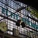 Köln am Rhein - Hauptbahnhof von borntobewild1946