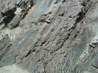 Structurally overturned sedimentary rocks (Hinton or Bluefield Formation, Upper Mississippian; Oakvale School Outcrop - Rt. 112 roadcut through Divide Ridge, Oakvale, West Virginia, USA)