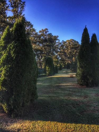 hickorytrailspark