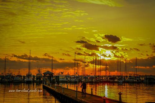 sun sunrise marina docks boat boats sailboats sky clous cloudy weather water river stlucieriver stuart florida seascape usa nature outdoors outside cyclist cycling bicycle tropical