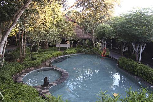 pool @ the Menjangan