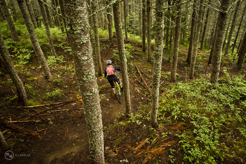 Fresh trail in Whistler for last weekends Enduro