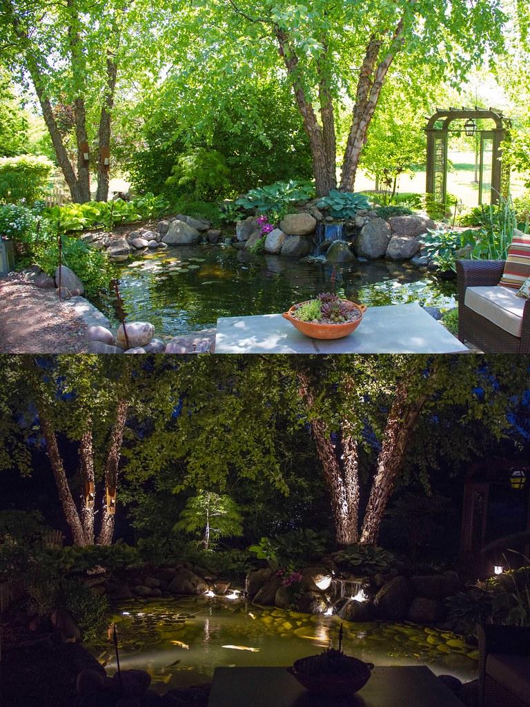 Day/Night Pond