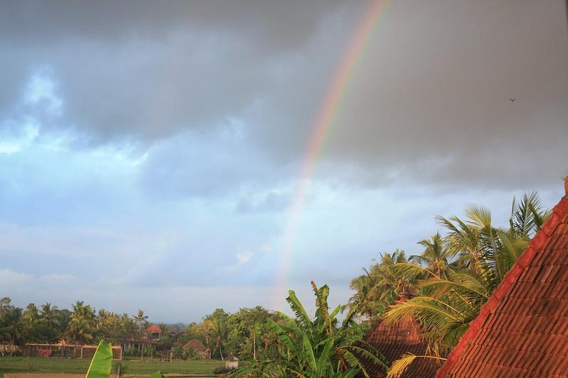 Bali_8982