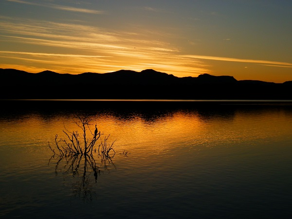 Sunset with Australasian Darter, Lake Moogerah, Scenic Rim