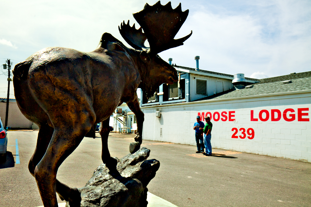 MOOSE-LODGE--Williston