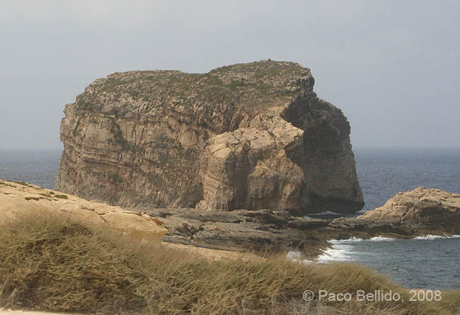 Fungus Rock. © Paco Bellido, 2008