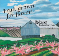 Mackintosh Farm August Peach Festival August 9th