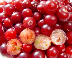 pink peppercorn, berry, red, frutti di bosco, produce, fruit, food, currant, cranberry, lingonberry,