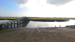 Monday after the PMC, spent the morning exploring the Sandwich boardwalk & salt marsh.