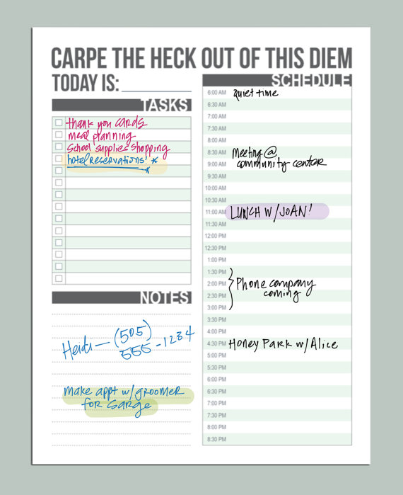 https://www.etsy.com/listing/161264769/carpe-diem-planner-daily-schedule?utm_source=Pinterest&utm_medium=PageTools&utm_campaign=Share