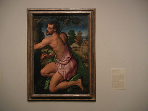 DSCN1166 _ Saint John the Baptist, c 1542-45, Jacopo da Ponte, called Bassano, Blanton Museum
