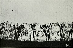 """Image from page 611 of """"The Bell System technical journal"""" (1922)"""
