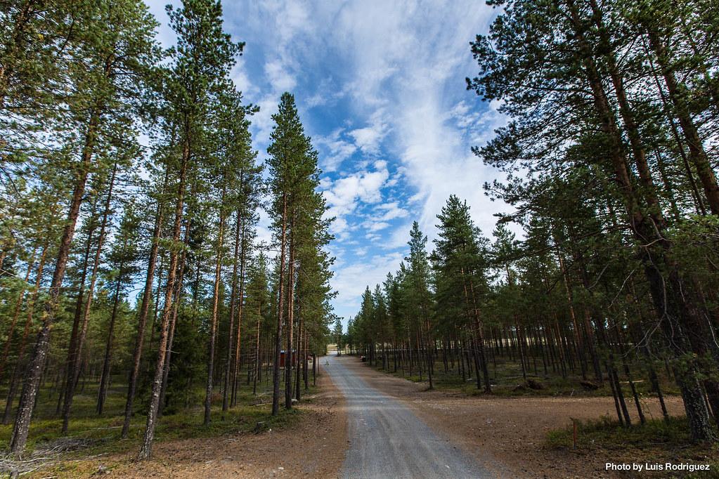4 días en Laponia sueca-40
