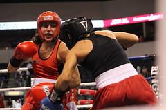 striking combat sports, professional boxing, individual sports, contact sport, sports, combat sport, muscle, kickboxing, sanshou, punch, amateur boxing, boxing,