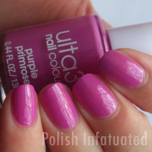 purple primrose2