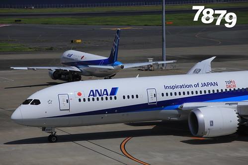 Q1910 (127)