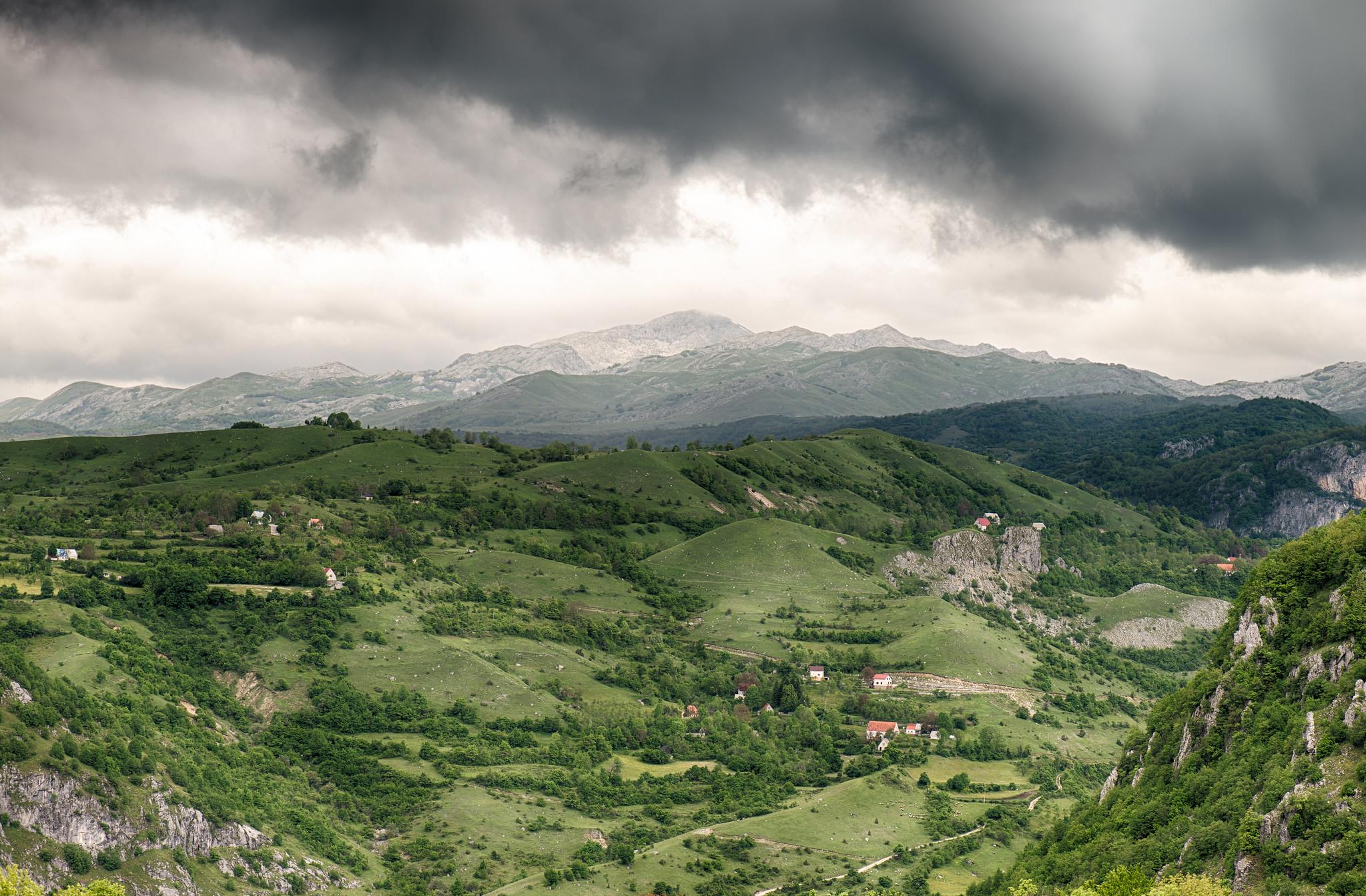 Montenegrin Pastureland