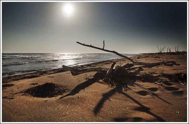 La spiaggia di Collelungo nel Parco Naturale della Maremma