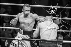 7 Fragen an Österreichs Boxer Nummer 1 - Gogi Knezevic