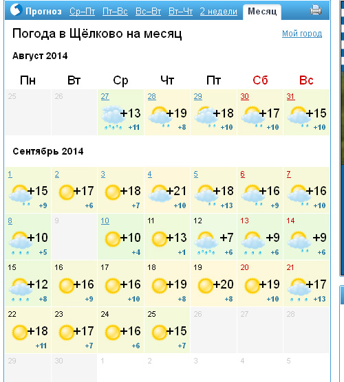 weather copy