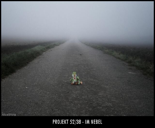 Projekt 52/38 - Im Nebel
