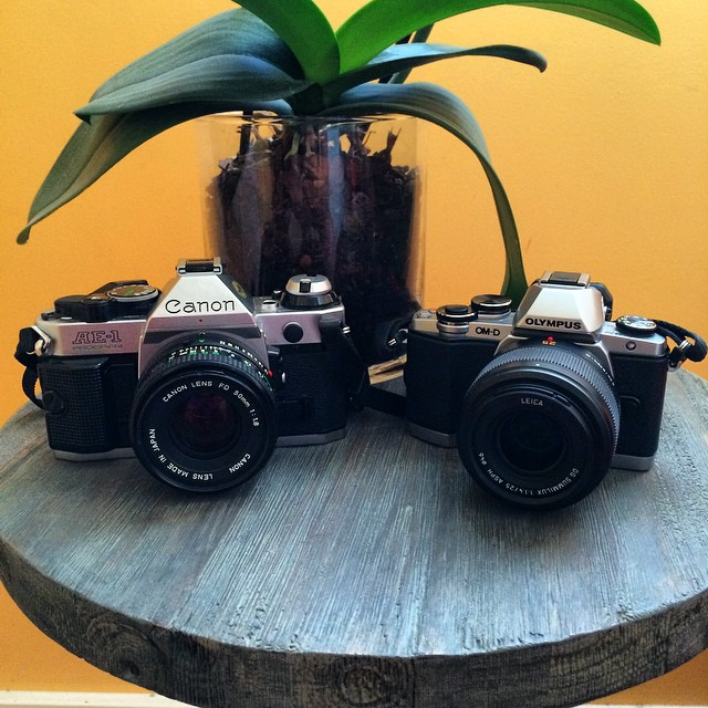 Canon AE-1 Program vs Olympus OM-D E-M10