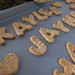 Carbs & Rec - Champion's Peanut Butter Oatmeal Birthday Biscuits (0023)